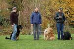 Die Hunde mit Ihren Menschen