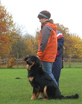 Hovawart mit Hundeführerin